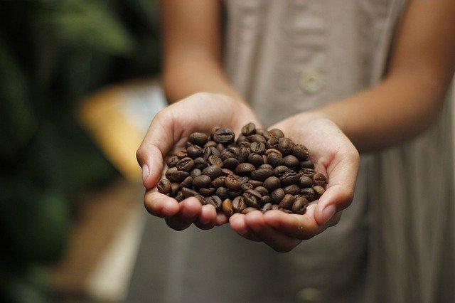 ידיים אוחזות בפולי קפה